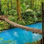 Costa Rica -- www.milviajes.com