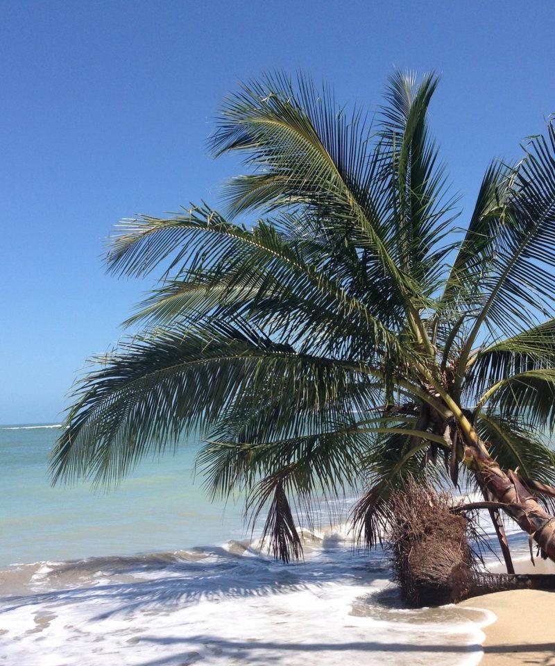 Escena Playa Caribe Costa Rica. www.milviajes.com